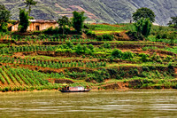 Farm along the Yangtze River