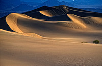 Mesquite Flats Sand Dunes at Death Valley CA